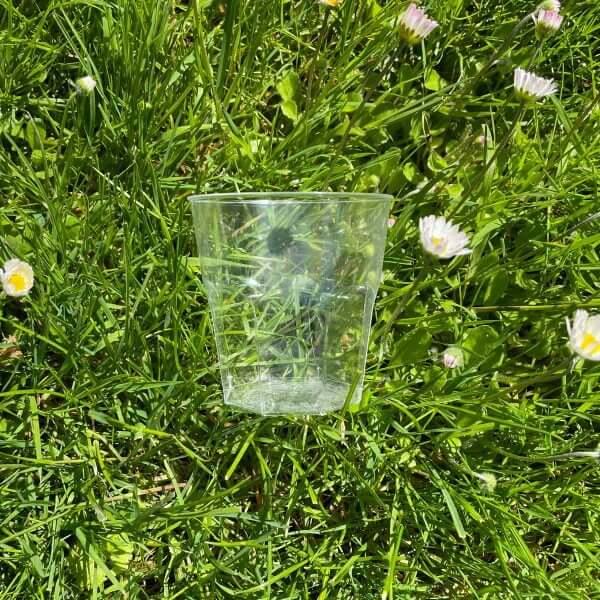 Brasserieglas voor picknickbox