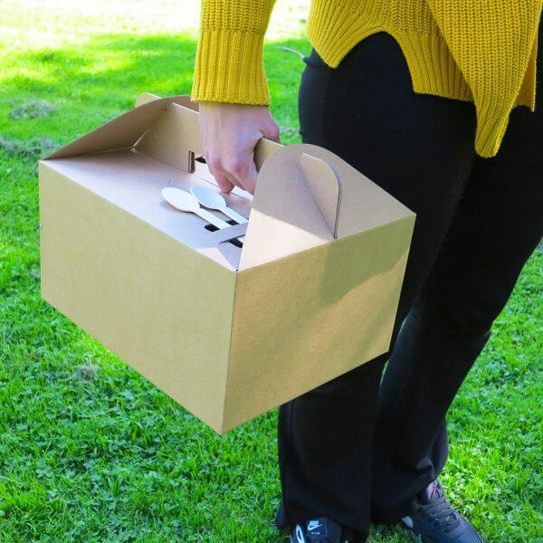 Boîte de transport en carton